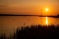 Warm orange sunset at the lakeside, with sun reflecting in the water. Swans in the background royalty free stock photography