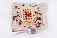 Warm potato waffle and pomegranate seed Stock Photo
