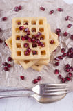 Warm potato waffle and pomegranate seed Royalty Free Stock Image