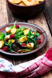 Warm pumpkin salad with raspberries and mixed leaf of arugula, chard, in brown plate on wooden rustic background. Close up. Stock Photo