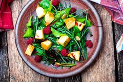 Warm pumpkin salad with raspberries and mixed leaf of arugula, chard, in brown plate on wooden rustic background. Top view. Stock Images