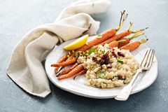 Warm quinoa salad with roasted carrots Stock Images