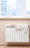 On a warm  radiator Royalty Free Stock Images