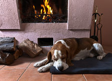 Warm room Stock Image