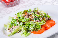 Warm salad with beef and herbs Royalty Free Stock Photos