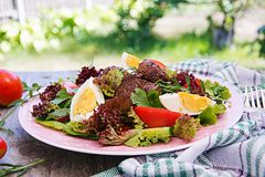 Warm salad from chicken liver, tomato, cucumber and eggs. Healthy dinner. Dietary menu stock photography