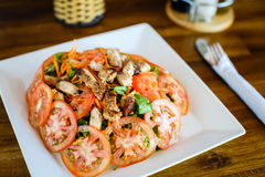 Warm salad with chicken and tomatoes Royalty Free Stock Photo