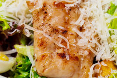 Warm salad with grilled salmon. Stock Images