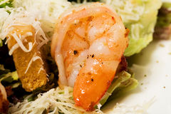 Warm salad with grilled shrimps. Stock Image