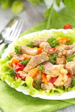 Warm salad with meat and vegetables Royalty Free Stock Images