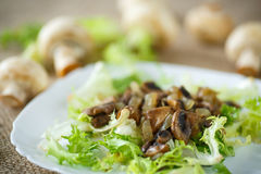 Warm salad with mushrooms. Warm salad with fried mushrooms and lettuce Royalty Free Stock Images