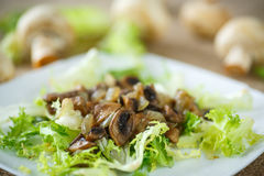 Warm salad with mushrooms. Warm salad with fried mushrooms and lettuce Stock Photos