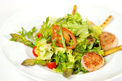 Warm salad with scallops Stock Photography