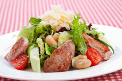Warm salad with veal meat Royalty Free Stock Photos