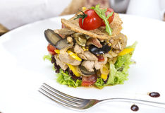 Warm salad of vegetables and meat Stock Images