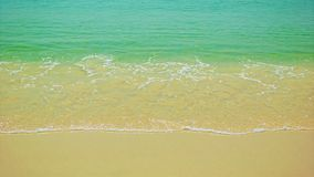 Warm sea surf with clear water and golden sand stock video
