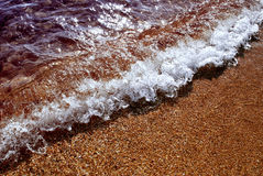 Warm sea wave. Small sea wave on the sunny shore Stock Images
