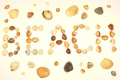 Warm shells beach. Word BEACH made by sea shells Royalty Free Stock Photography