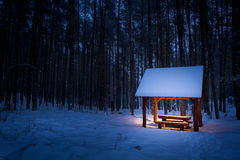 Warm shelter in a cold winter forest Stock Photos