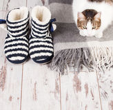 Warm slippers on the background floor Stock Image