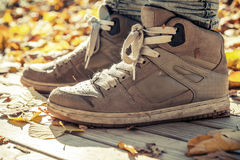 Warm sneakers, sporty shoes standing wooden floor Stock Images