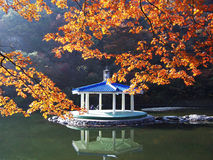 Warm splendid colorful forests. Splendid autumn colorful forests with summer house  in korea Stock Photos