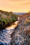 Warm Spring Sunrise Brook Stock Images