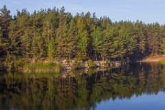 Trees on the shore of a beautiful quarry with clear water. Tall stone. Ukraine. royalty free stock image