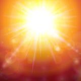 Warm Summer Sunshine Royalty Free Stock Photos