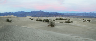 The warm sun rises on the sand dunes, Death Valley Royalty Free Stock Photo