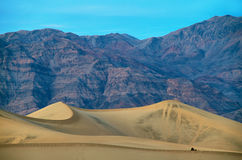 The warm sun rises on the sand dunes, Death Valley Stock Photography
