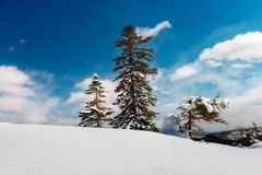 A warm sunny day in the mountains in winter. Royalty Free Stock Photo