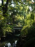Warm sunny evening in traditional Chinese garden. With lots of green trees stock images