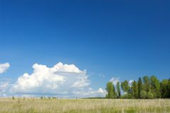 Warm sunny midday landscape in village Royalty Free Stock Image