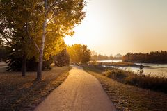 Warm autumn sunshine on a walking path royalty free stock photography