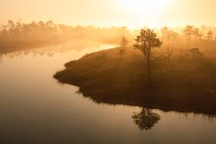 Warm sunrise at a swamp covered in fog. Sunshine beats through the thick mist with tree silhouettes and a view tower at Kemeri Nat stock photo