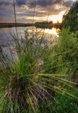 Warm sunset of gold lake Royalty Free Stock Image