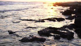 Warm sunset powerful tropic sea waves on the beach. Rocky bottom and clear water stock video footage