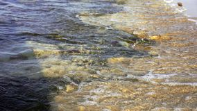 Warm sunset powerful tropic sea waves on the beach. Rocky bottom and clear water stock video