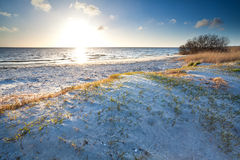 Warm sunshine over beach by North sea Stock Image