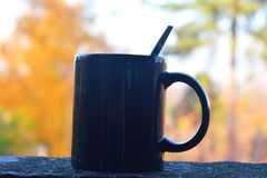 Warm tea and relaxing in nature Royalty Free Stock Images