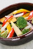 Warm vegetable salad Royalty Free Stock Images