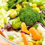 Warm vegetable salad Royalty Free Stock Image