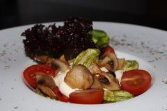 Warm vegetable salad with sauce stock image