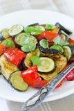 Warm vegetables salad stock image
