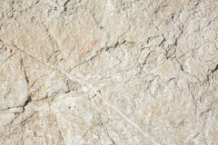 Warm white stone texture background in sunlight Stock Image