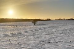 Warm Winter Landscape. Snowy winter landscape though warmed by the sun. The image was taken near Greifswald, Mecklenburg-Vorpommern, Germany, using a HDR imaging Stock Photos
