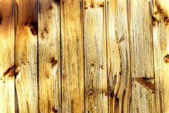 Warm wood Stock Photo