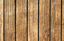Warm wood texture with vertical lines. Yellow brown wooden background for natural banner. Royalty Free Stock Photography