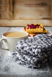 Warm wool scarf Royalty Free Stock Photos